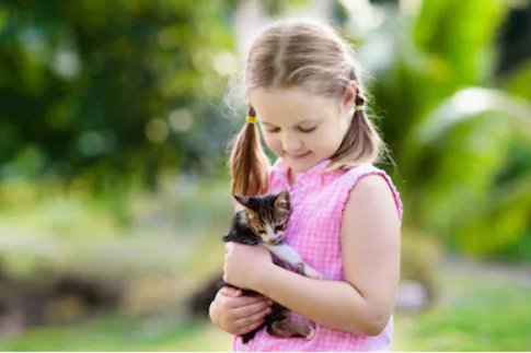 Lessons children can learn from owning a pet