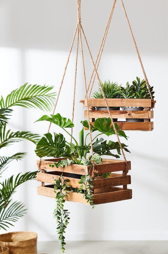 10 أفكار مميزة لديكور النباتات الداخلية