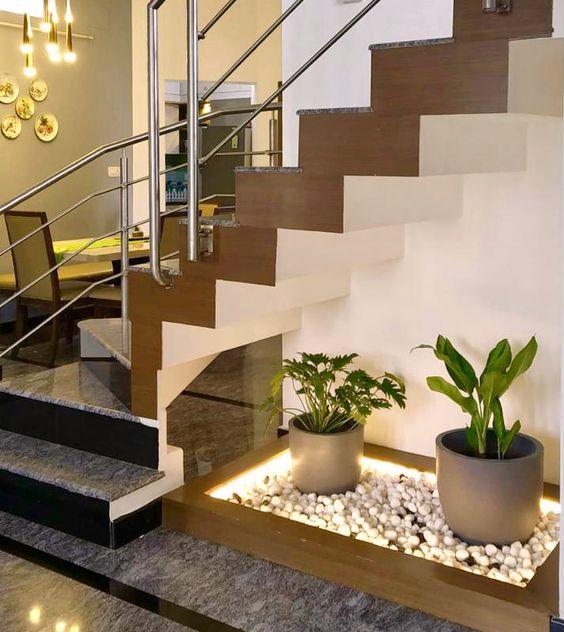 نبات داخلي أسفل الدرج