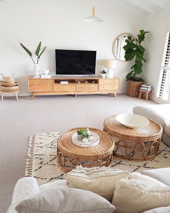 نبات داخلي غرفة المعيشة